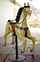 Carousel Horse Photos